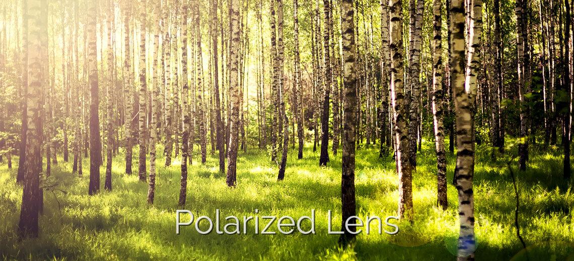 polarized lens