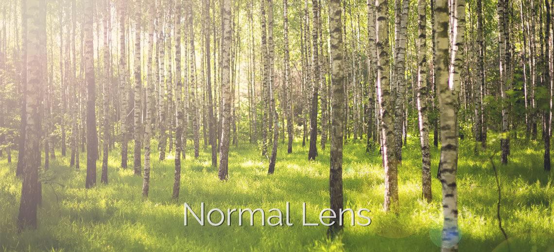 polarized normal